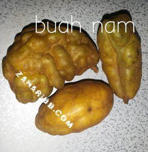 buah nam1